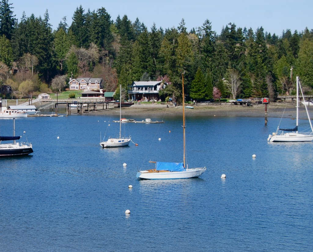 How many houses are on Bainbridge Island's shoreline?